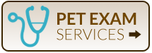 Pet Exam Services